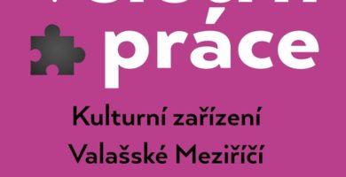 Pracanti – účast na Veletrhu práce ve Valašském Meziříčí